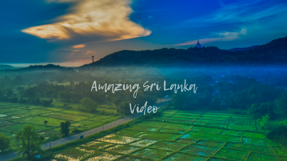 Amazing Sri Lanka , Short video