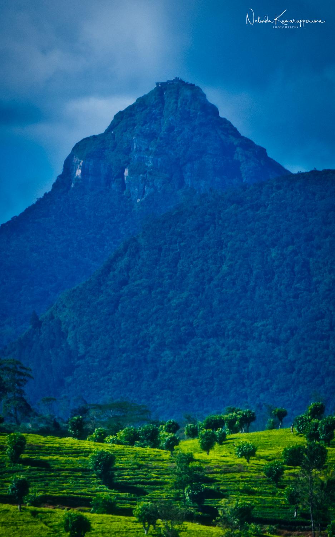 Adam's Peak (SriPada)